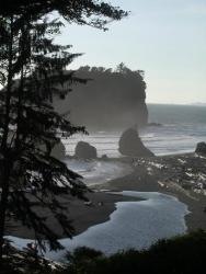 Olympic National Park Beach